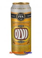 Olvi Export 24 шт